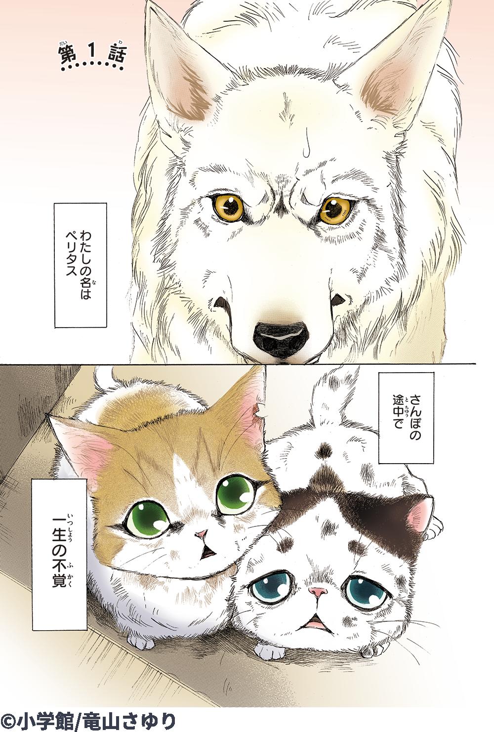 の 不覚 一生